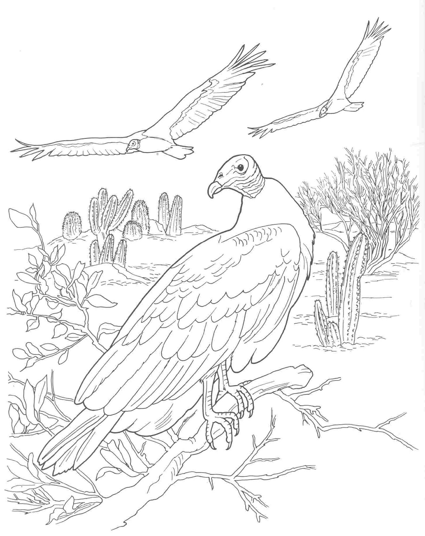 Coloring Pages Plants And Animals : Free coloring pages of dead animals